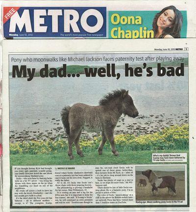 Pony dad